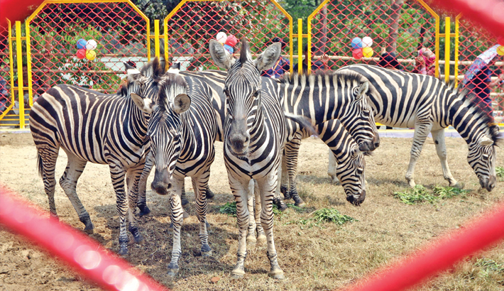 tourist attractions places in Chittagong