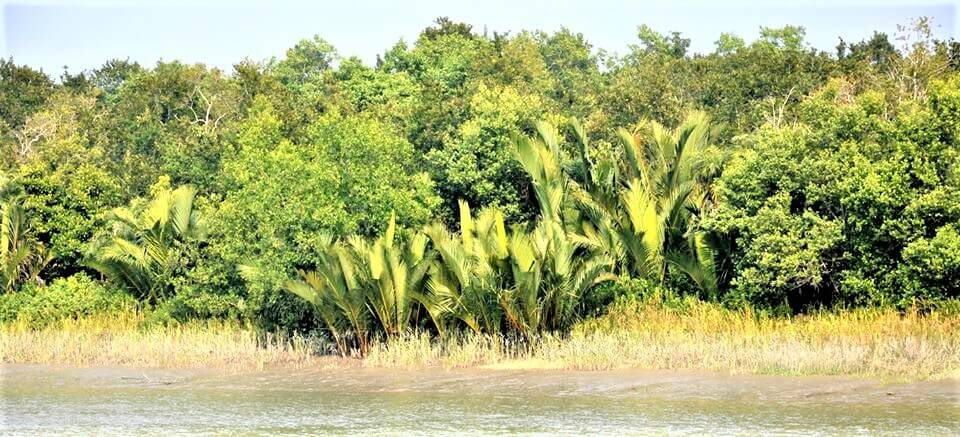 Tourist Places in Barisal Division
